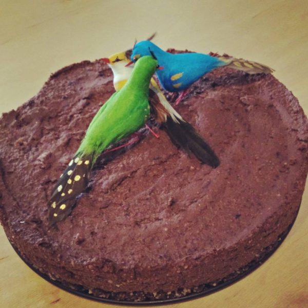 Onze vogeltjes zijn alvast fan. Eis jouw deel op vooraleer ze me alles gaan vliegen. #vegan #chocolade #bosvruchten #raw #pecan #taart