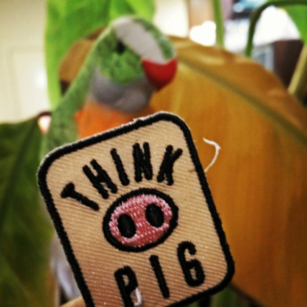 Think-Pig